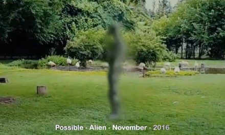 Alien Footage This Is Creepy 11-14-2016