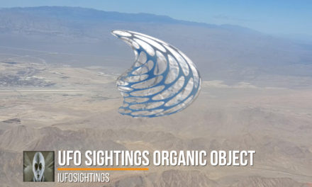 UFO Sightings Organic Object Multiple Witnesses November 2016