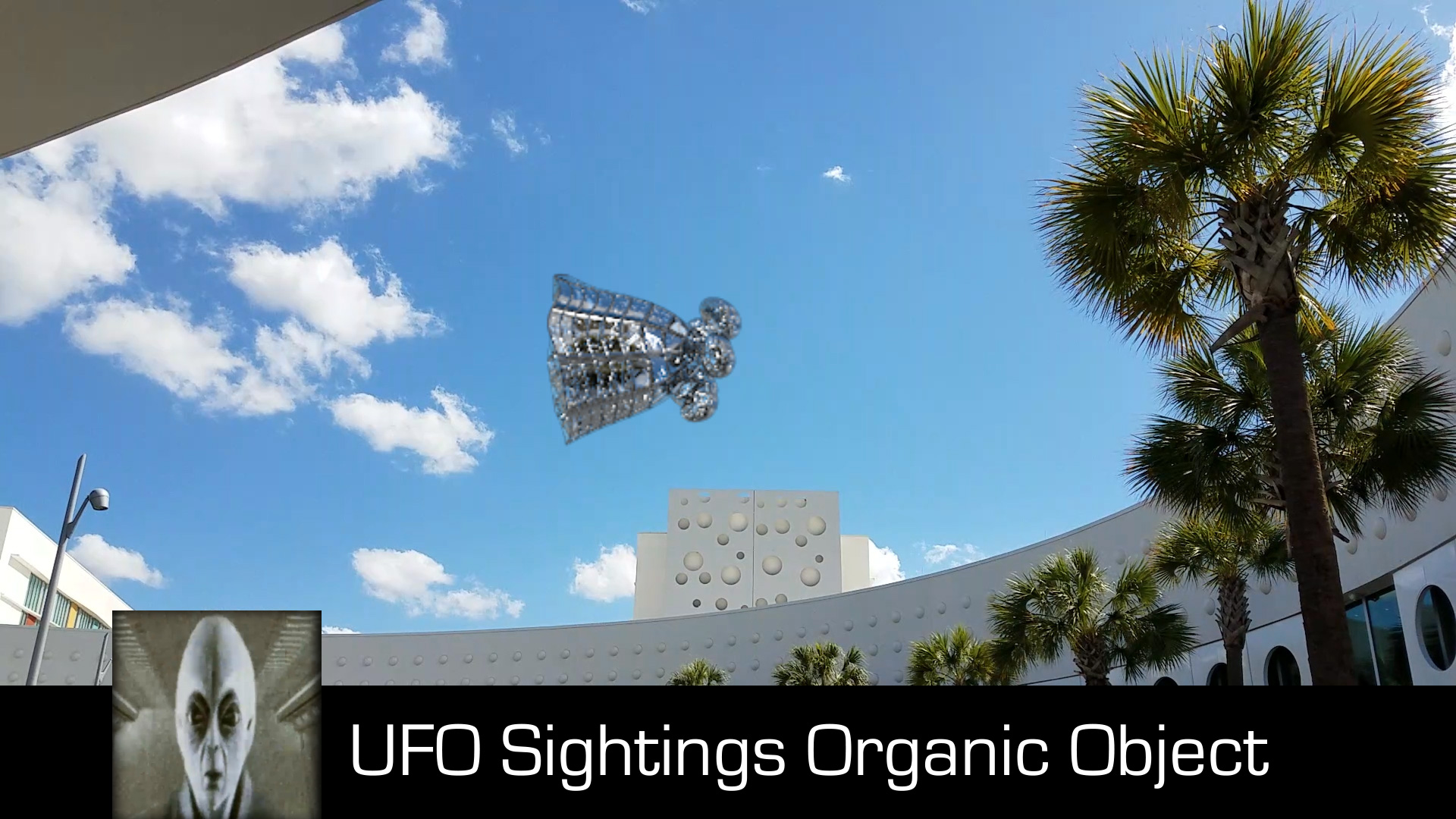 UFO Sightings Organic Object August 6th 2017