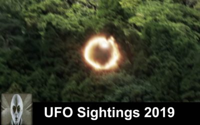 UFO Sightings 2019 Alien Space Ship And Something In The Amazon