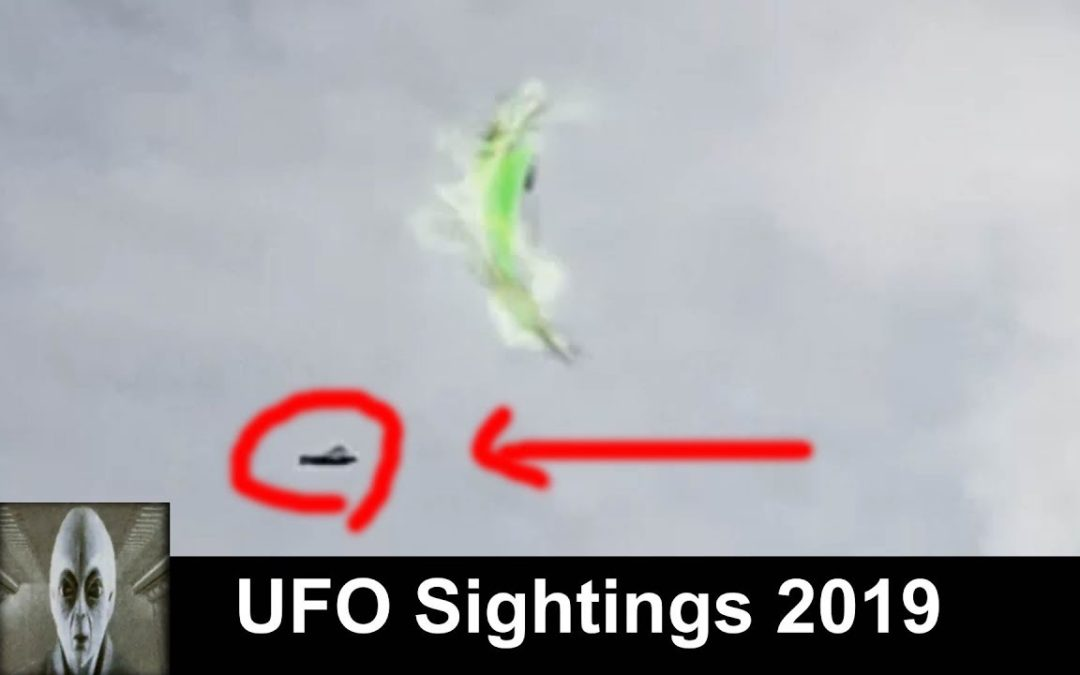 UFO Sightings 2019 UFO Avoids Bird Must See Footage